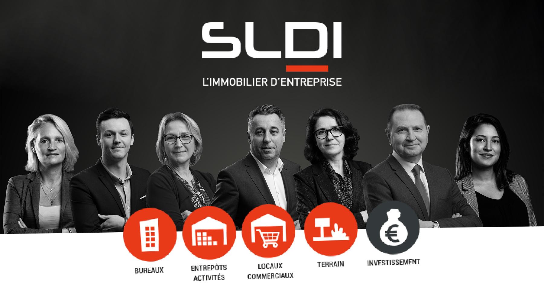 SLDI - Image
