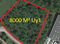 8000 m² zone Uy1