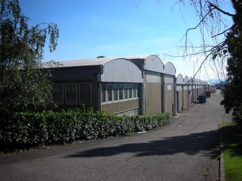 Location Locaux d'activités Saint Priest 69800 - Photo 1