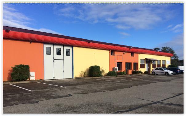 'PARC WILSON' - A LOUER Locaux d'activité 539 m² div. à partir de 265 m² à Décines - Photo 1