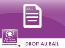 Commerces Les Sables D Olonne 85100