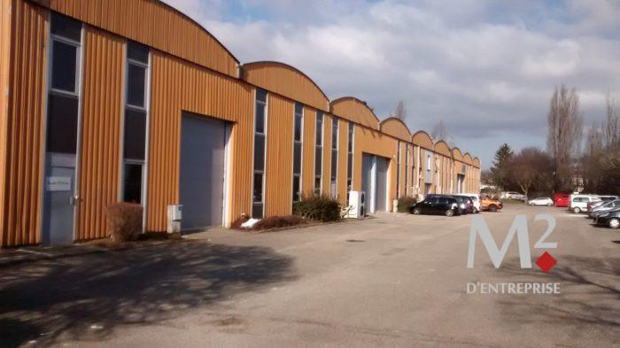 A LOUER - ACTIVITE 206 M² - DARDILLY - Photo 1
