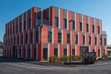 Vente Locaux d'activités Francheville 69340 - Photo 1