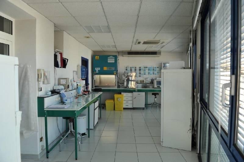 location locaux d 39 activit s locaux commerciaux perpignan 66000 190m2. Black Bedroom Furniture Sets. Home Design Ideas
