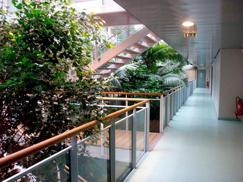 Location Bureau Montpellier 34000 500m Bureauxlocaux Com
