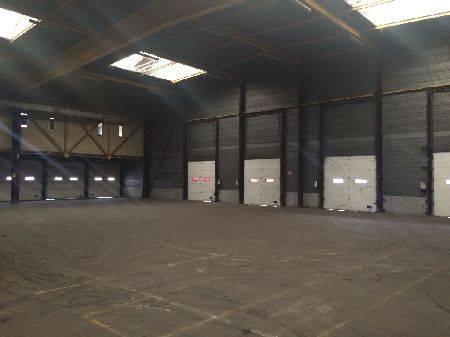 Entrepôt 3646 m² (Div. 642 m² à louer(STRASBOURG 67100)