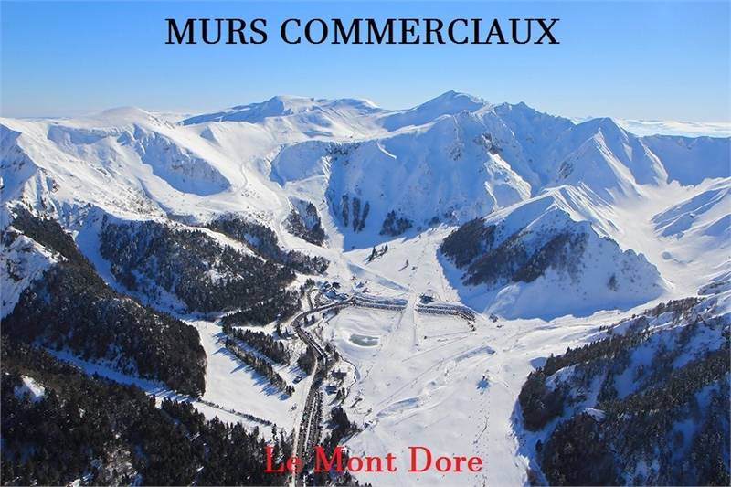 Commerces Le Mont Dore 63240
