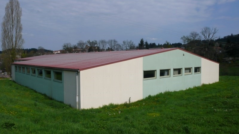 Entrepôts Local d'activités Belmont De La Loire 42670