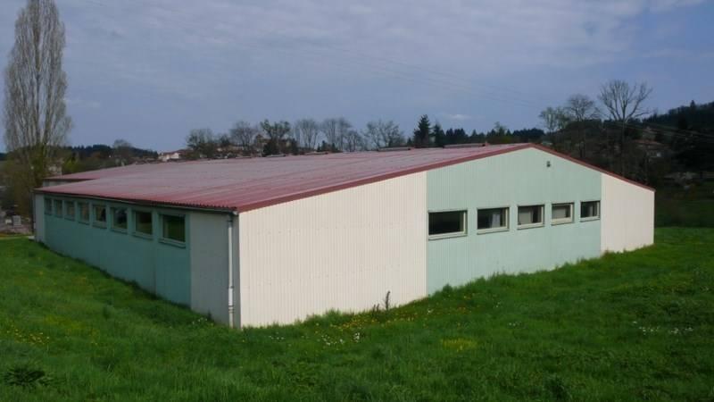 Entrepôts Local d'activités Roanne 42300