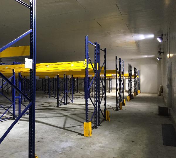 Entrepôt frigorifique 4450m² - Photo 1