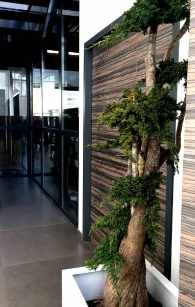 Immeuble de bureaux et activité légère très bon état général Neyron