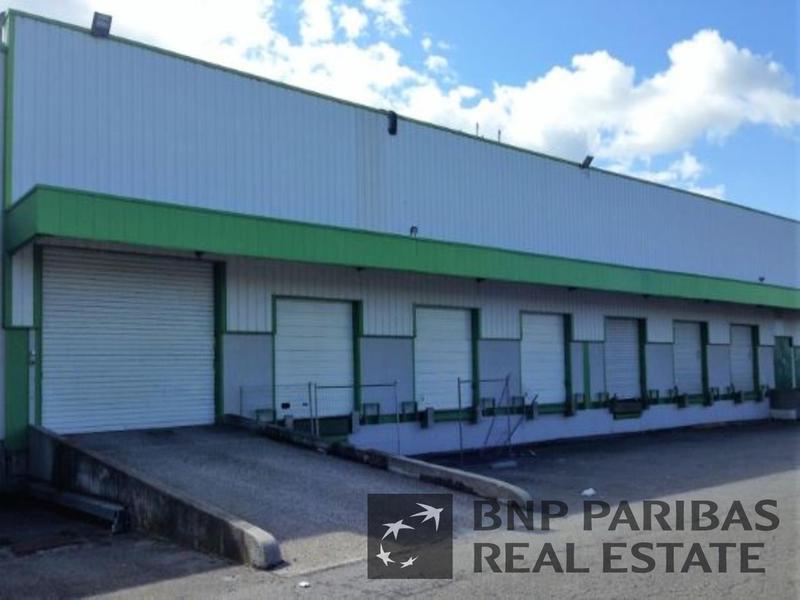 Location Locaux d'activités GENAS 69740 - Photo 1