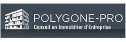 POLYGONE PRO - Logo